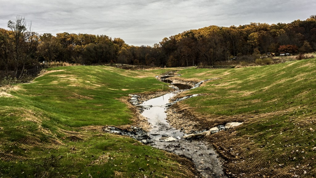 Stream Restoration & Wetland Mitigation